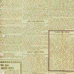 EEJ-NY-news-article-99-3.jpg