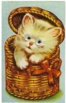 "Cat Squeaker Postcard Souvenir Post Card Printed in Japan 3.5""x5.5"" Not Mailed"