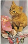 "Cat Squeaker Postcard Carte Postale Rhodania Lyon Made in France 3.5""x5.5"" Not Mailed"