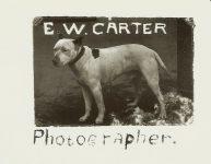 EW Carter Photographer EW Carter photo ca. 1900 Glass negative: 7″x5″