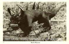 Hodag Man-Eating Hodag – Captured in the Northwoods Postmarked: Feb 3, 1944 Merrill, Wisconsin 88, Herman the Printer, Minocqua, WIS