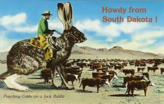 Howdy from South Dakota! Out here in the West they do punch cattle. Some of them do on Broncos and even as you can see, some of them do on the lowly Jack Rabbit. Plastichrome Printed in Ireland ca. 1992 Wall Drug Store Wall, South Dakota 5.5″x3.5″