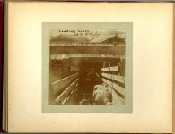 Loading SHEEP at So St Paul 1897 Minneapolis & St. Paul, Minnesota PHOTOGRAPHS To: Mrs. N.F. Parsons from M.I. Came, St. Paul, Minn (524 Cedar?) October 21st 1897 Snapshot: 3.5″x3.5″ Album: 7″x5.5″