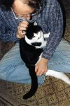 Skeezer Kitty with his Uncle Forrest Forrest helped foster him for a while. Photo: January 15, 2001