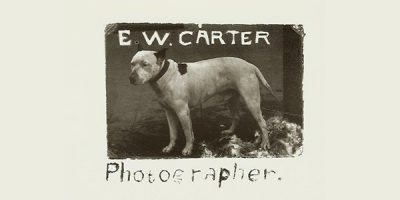 EW Carter