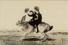 jackalopes_potpourri_jackalope postcards_Jackalope Riding Jack Rabbit_13JackalopeRidingJackRabBWPC