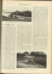 1909 11 3 CHALMERS-DETROIT, NATIONAL The Vanderbilt Cup Race and the Wheatley Hills and Massapequa Sweepstakes HORSELESS AGE page 493