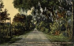 1909 ca WHITEFIELD AVENUE GRAND PIZE AND VANDERBILT CUP RACE SAVANNAH GA postcard front