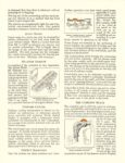 1922 LEXINGTON The Miraculous Ansted Engine 8.5″×11″ page 3
