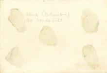 1910 Vanderbilt Cup Columbia — Stone. Stone killed on Parkway photo 65×45 back