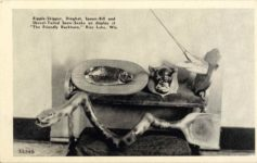 "1950 ca. Ripple-Skipper, Dingbat, Spoon-Bill and Shovel-Tailed Snow-Snake on display at ""The Friendly Buckhorn,"" Rice Lake, Wis. 34296 postcard front"
