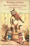 1880 ca. Cats ALL PROMENADE Waterman Nelson Minneapolis 3″×4.5″