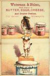 1880 ca. Cats INTO MISCHIEF Waterman Nelson Minneapolis 3″×4.5″