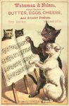 1880 ca. Cats THOMAS'S CONCERT Waterman Nelson Minneapolis 3″×4.5″