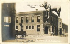 1910 11 24 Dog on nice Town Bussiness Block Bryan, S. D. RPPC front
