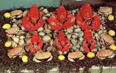 1977 RHODE ISLAND SEAFOOD postcard front