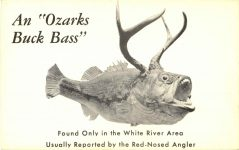 An Ozarks Buck Bass postcard front