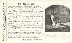 1910 ca. CATS The Beggar Cat poem ELLA WHEELER WILCOX postcard front