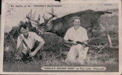 1950 ca WIS, Rice Lake WORLDS RECORD DEER Friendly Buckhorn 27757 postcard screenshot front