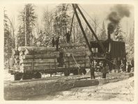 1915 ca. Winter timber harvesting Roleff photo 8.5″×6.5″