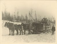 1915 ca. Winter timber harvesting horse drawn sled Roleff photo 8.5″×6.5″